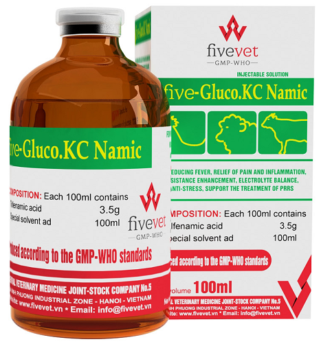 Five - Gluco.KC Namic_vn