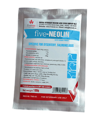 Five - Neolin_vn