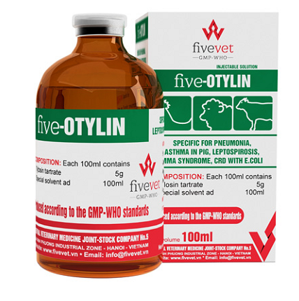 Five - Otylin_vn